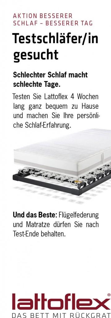 Salesfolder_CHF.indd